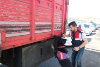 Bingöl'de Jandarma 148 Faili Meçhul Olayı Aydınlattı, 198 Kişi Tutuklandı