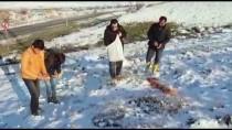 Gölet Çevresine Hayvanlar İçin Yem Bırakıldı