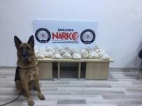 Narkotik Köpeği 19 Kilo Eroini Buldu