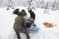 ORMANA - (Özel) Uludağ'da Kar Motoru İle Yaban Hayvanlarını Beslediler