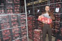 Samsat'ta Kış Ortası Nar İhraç Ediliyor