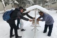 Üniversiteli Öğrenciler Kuşlar İçin Doğaya Yem Bıraktı