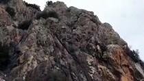 KEÇİ - Burdur'da Kayalıklarda Mahsur Kalan Gebe Keçi Kurtarıldı