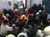 GÜZELÇAMLı - Güzelçamlı'da 53 Kaçak Göçmen Yakalandı