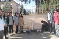 Öğrencilerden Sokak Hayvanları İçin Örnek Proje