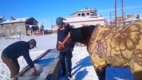 Yalakta Ki Buzu Kırıp Atına Su İçirdi