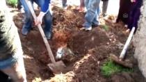 Şanlıurfa'da Çöken Ahırdaki 8 Küçükbaş Hayvan Telef Oldu