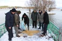 AVCILIK - Seydişehir'de Kuşlar Ve Yaban Hayvanlarına Yem Bırakıldı