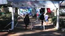 DENİZ KAPLUMBAĞALARI - DEKAMER'de 10 Yılda 165 Yaralı Deniz Kaplumbağası İyileştirildi
