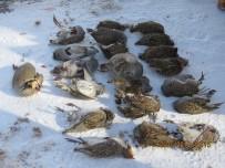 Erzincan'da Kaçak Avcıya 17 Bin 194 TL Para Cezası Verildi