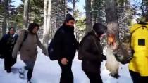 KARANLıKDERE - ODAK'tan Zorkun Yaylası Kar Yürüyüşü