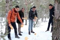 Soğuk Kış Günlerinde Yaban Hayvanlarını Unutmadılar