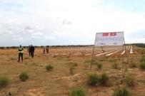 HİPERTANSİYON - TİKA'dan Tunuslu Çiftçilere Destek
