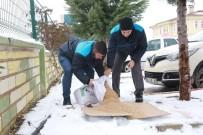 Elazığ'da Sokak Hayvanları İçin Yem Bırakıldı