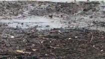 ŞİDDETLİ YAĞIŞ - İzmir'de Şiddetli Yağış Düden Oluşturdu