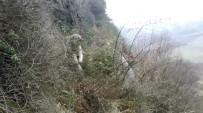 Kayalıklarda Mahsur Kalan Sokak Köpeğini İtfaiye Kurtardı