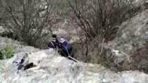 KEÇİ - Kayalıkta Mahsur Alan Keçiler Kurtarıldı