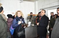 Vali Öksüz, Boğatepe'de İncelemelerde Bulundu