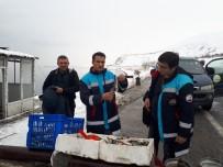 AVCILIK - Buz Tutan Engil Çayı'nda Su Ürünleri Denetimi