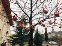 Kahtalı Öğrenciler Kuşlar İçin Ağaçlara Yem Astı