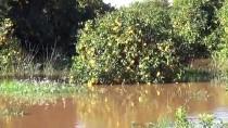 Mersin'deki Yağış Ve Fırtına