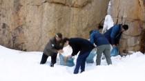 Zigana Dağı'nda Yaban Hayvanları Unutulmadı