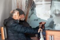 TELEKONFERANS - Bodrum'da Tehlikeli Eylem