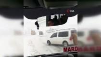 Mardin'de Kar Yağışı Nedeniyle Araçlar Mahsur Kaldı