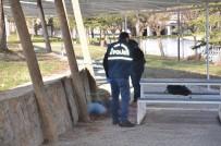 POLİS EKİPLERİ - Silahla Vurulan Gencin Cesedi Bulundu