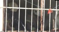 ÇALıKUŞU - 14 Yaşındaki Çocuk, Hasta Kadını Sırtlayıp Yangından Kurtardı