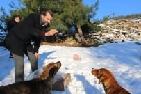 Gürsu Belediyesi'nden Karda Hayvanlara Yiyecek