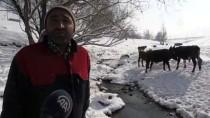 Kar Soğuğunu Futbol Ve Kızaklarla Eğlenceye Dönüştürüyorlar