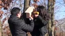 ANADOLU LİSESİ - Liselilerden Kuşlara Sıcak Yuva