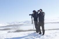 Tödürge Ve Ulaş Göllerinde Kış Ortası Kuş Sayılı Yapıldı