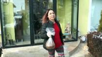 SOKAK HAYVANLARI - Hayvan Dostu Profesör 20 Yıldır Sokak Hayvanlarını Besliyor