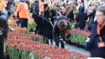 ZİYARETÇİLER - Hollanda'da 'Ulusal Lale Günü' Etkinliği
