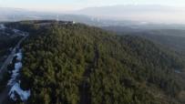 (Özel) Bursa'nın En Güzel Ormanlarında Çevre Felaketi...