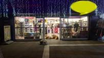 Sokak Köpekleri Isınmak İçin Dükkan Kapısını Mesken Tuttu