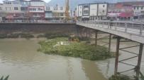 ASI NEHRI - Asi Nehri Su Canavarlarından Kurtuldu