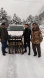 Kastamonu'da Kaçak Avcılara Yönelik Denetimlerini Arttırdı