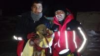 YAVRU KÖPEK - Su Kuyusuna Düşen Yavru Köpeğe AFAD Şefkati