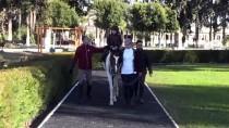 BEDENSEL ENGELLİ - Kadın Seyis, Atları Çocuklarından Ayırt Etmiyor