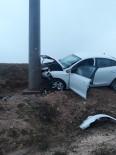 Otomobil Elektrik Direğine Çarptı Açıklaması 2 Yaralı