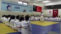 AVRUPA - 'Türk Judosunun Geldiği Nokta Son Derece İyi'