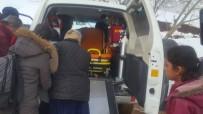 Anne Ve Bebeği Karlı Dağlar Aşılarak Hastaneye Ulaştırıldı