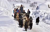 KEÇİ - Bitlis'te Zorlu Besicilik