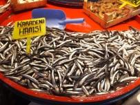 Fiyatlara Gürcü Hamsisi De Çare Olmadı