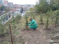 İzmit'te Park Bahçe Çalışmaları Devam Ediyor