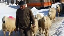 Köylülerin Yoğun Kış Şartlarıyla İmtihanı
