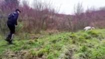 Kaybolan Yaşlı Adam, Ormanlık Alanda Bulundu